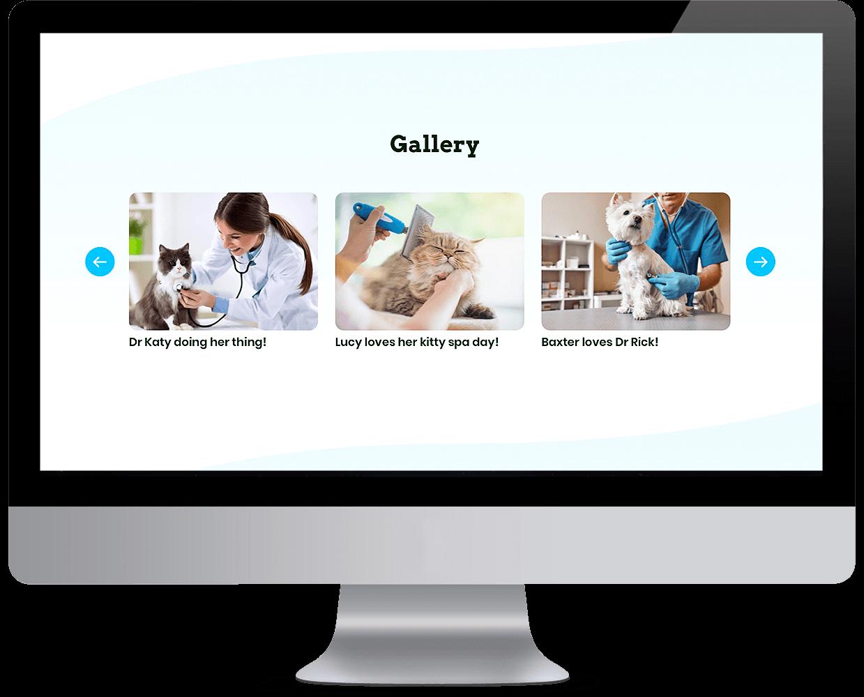 Pet services management hub Gallery desktop view